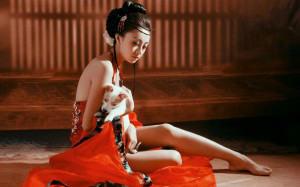 geisha-300x187
