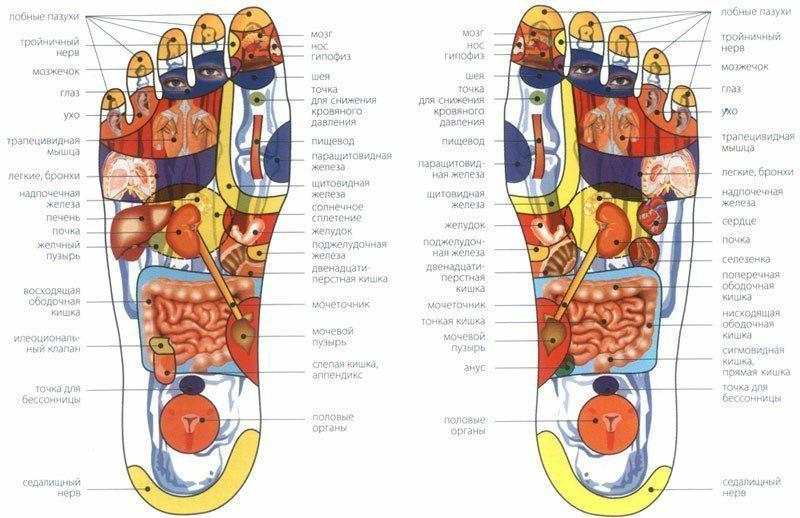 refleksologiya